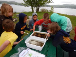2018 YDP Macroinvertebrate Lab